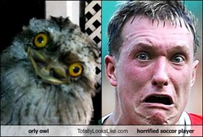 orly owl Totally Looks Like horrified soccor player