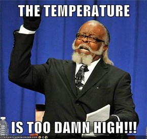 THE TEMPERATURE  IS TOO DAMN HIGH!!!