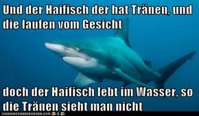 Und der Haifisch der hat Tränen, und die laufen vom Gesicht  doch der Haifisch lebt im Wasser, so die Tränen sieht man nicht