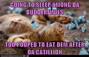 GOING TO SLEEP AMONG DA BUDDERFWIES  TOO POOPED TO EAT DEM AFTER DA CATILLION