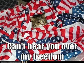 Can't hear you over my freedom
