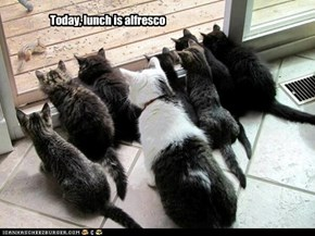 Today, lunch is alfresco