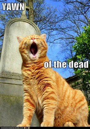 YAWN of the dead