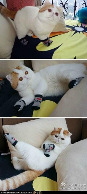 Snoopy in Socks