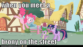 when you meet a   brony on the street