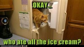 OKAY...  who ate all the ice cream?