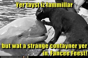 Yer tayst iz fammillar  but wat a strange contayner yer in, Fancee Feest!