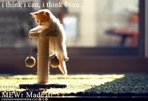 i think i can, i think i can...  MEW! Made it!