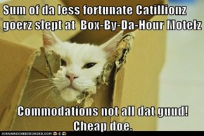 Sum of da less fortunate Catillionz goerz slept at  Box-By-Da-Hour Motelz  Commodations not all dat guud! Cheap doe.