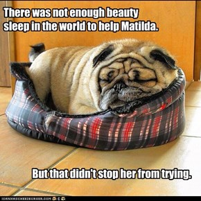 There was not enough beauty sleep in the world to help Matilda.