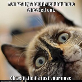 You really should get that mole checked out.  Oh wait, that's just your nose.