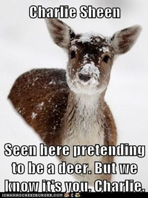 Charlie Sheen  Seen here pretending to be a deer. But we know it's you, Charlie.
