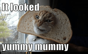 It looked   yummy mummy