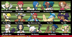 Your Friends as Gym Leaders