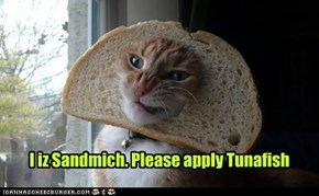 I iz Sandmich. Please apply Tunafish