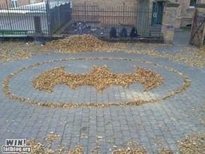 Leaf Rises WIN