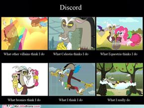 Discosquare