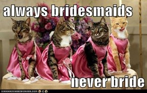 always bridesmaids  never bride