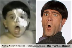 This Boy (funniest Home videos) Totally Looks Like Moe (The Three Stooges)