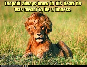 Leopold  always  knew  in  his  heart  he  was  meant  to  be  a  lioness.