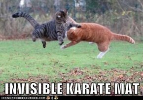 INVISIBLE KARATE MAT