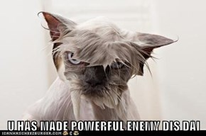 U HAS MADE POWERFUL ENEMY DIS DAI