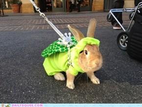 Bunday: King Koopa Bunny