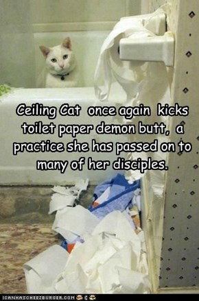 Ceiling Cat  once again  kicks toilet paper demon butt,  a practice she has passed on to many of her disciples.