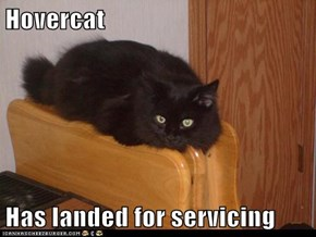 Hovercat  Has landed for servicing