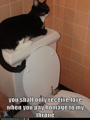you shall only receive love when you pay homage to my throne
