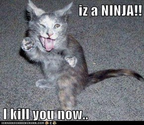 iz a NINJA!!  I kill you now..