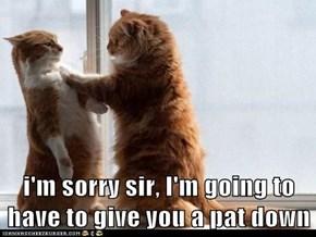i'm sorry sir, I'm going to have to give you a pat down