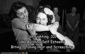 Cat Fighting  101  (aka Building Self Esteem) Biting ,  Pulling Hair and Screeching