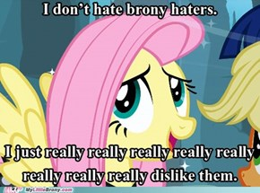 I don't hate brony haters