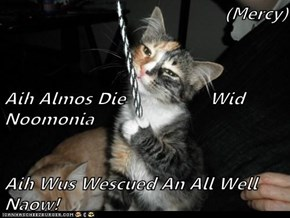 (Mercy) Aih Almos Die                 Wid Noomonia Aih Wus Wescued An All Well Naow!