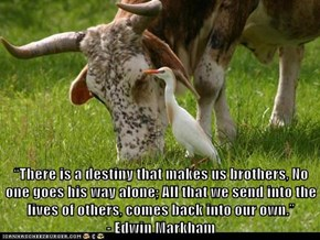 """There is a destiny that makes us brothers, No one goes his way alone; All that we send into the lives of others, comes back into our own.""                                           - Edwin Markham"