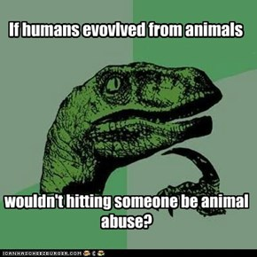 If humans evovlved from animals