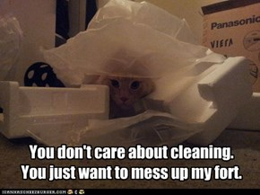 You don't care about cleaning. You just want to mess up my fort.