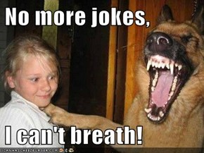 No more jokes,  I can't breath!