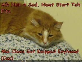 Aih Hab A Sad, Nawt Start Teh Fite  Mai Claws Got Kwipped Enyhaow!            (Cuz)