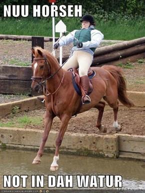 NUU HORSEH  NOT IN DAH WATUR