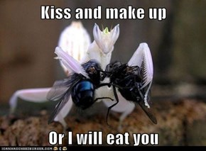 Kiss and make up  Or I will eat you