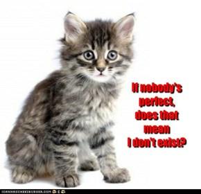Worried kitten asks .. .. ..