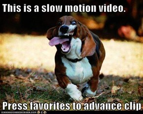 This is a slow motion video.  Press favorites to advance clip