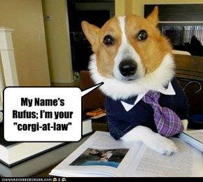I hired a new attorney