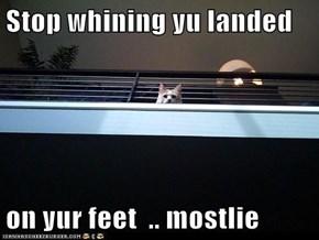 Stop whining yu landed   on yur feet  .. mostlie