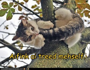 Aifink ai treed mehself.