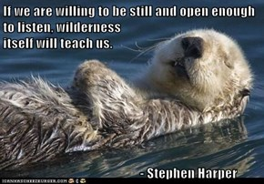 If we are willing to be still and open enough to listen, wilderness                                               itself will teach us.                                             - Stephen Harper