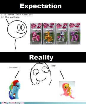 Bronies and theirs MLP toys