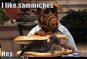 I like sammiches  Hey